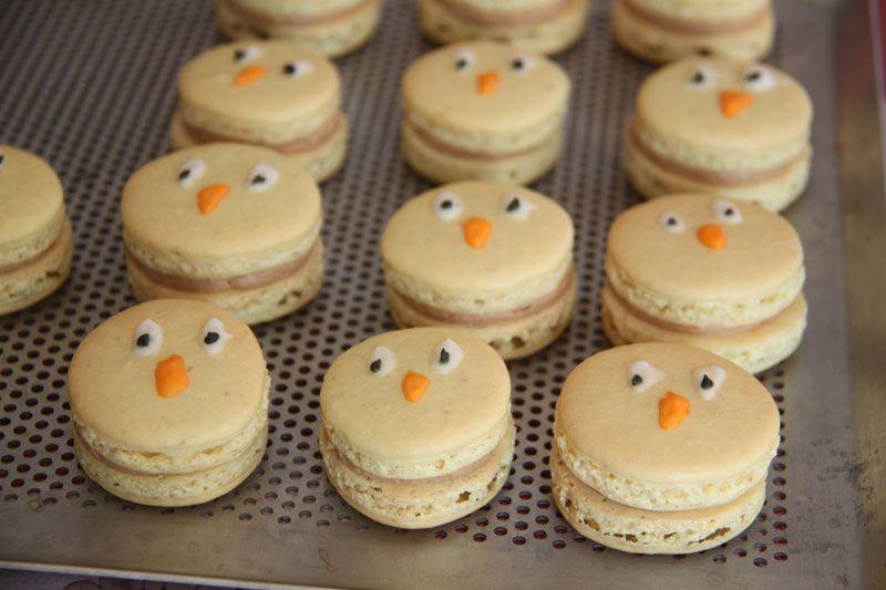 Macarons Poussins pour Pâques
