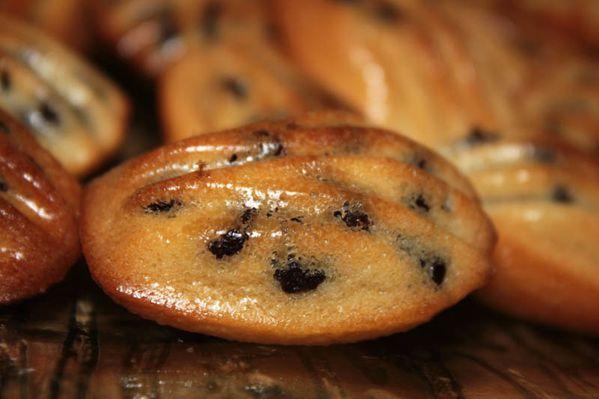 Mini madeleines à la clémentine et aux pépites de chocolat
