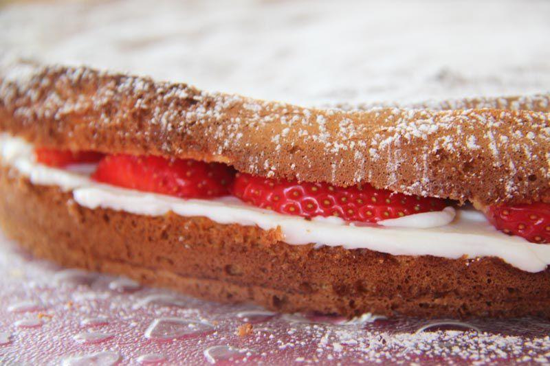 Sponge cake ricotta fraises