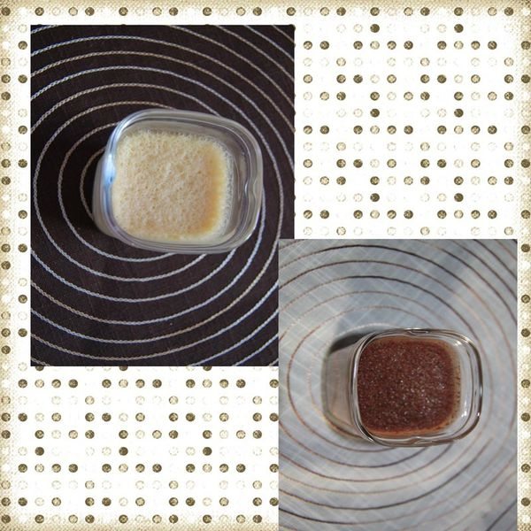 Flan  oeufs au lait nature et chocolat (Multi Délices)