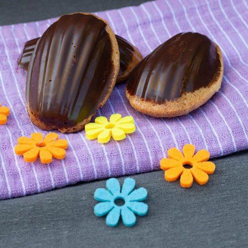 adeleines-fraises-et-noix-de-coco-coque-en-chocolat