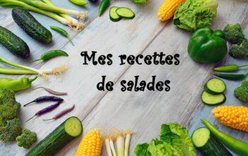 Mes recettes de salades index de recettes