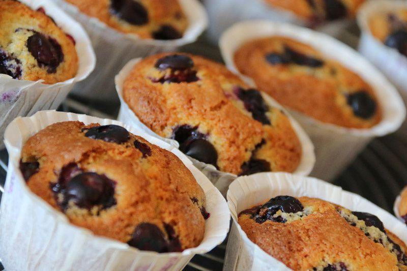 Muffins à la semoule et aux myrtilles