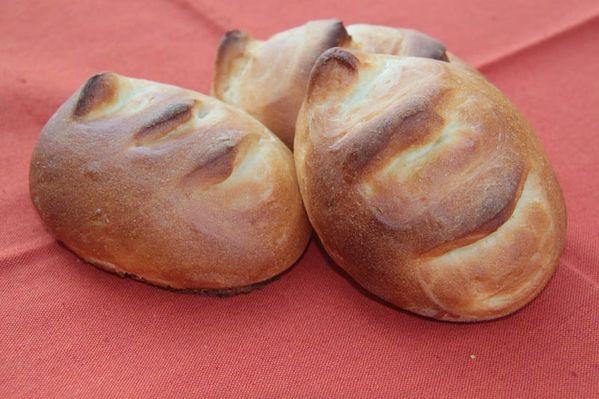 Pains-au-lait-sans-oeuf-1