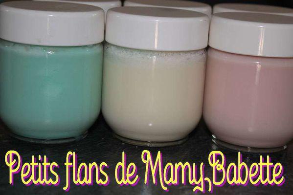 Petits flans de Mamy Babette
