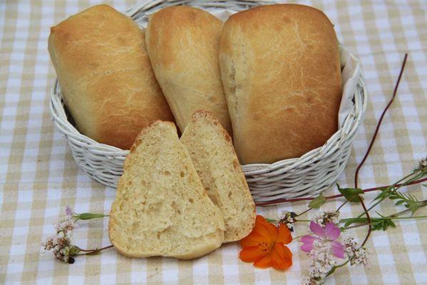 Petits pains Ciabatta (à l'huile d'olive)