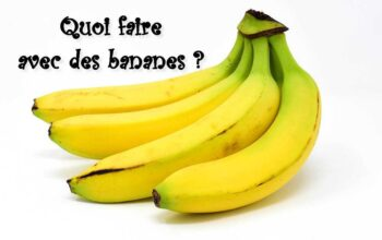 Quoi faire avec des bananes index de recettes