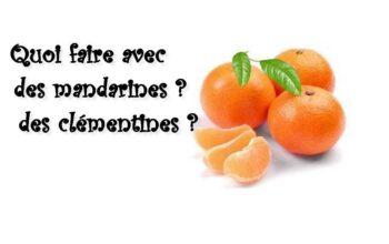 quoi faire avec des mandarines ? des clémentines ? index de recettes