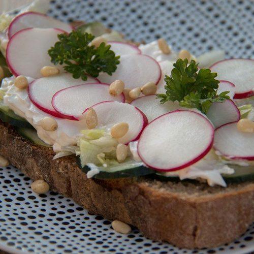 Tartines-de-fromage-frais-au-concombre-et-radis-rose-1