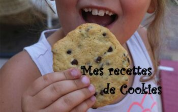mes recettes de cookies - index de recettes