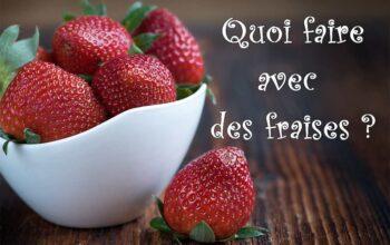 quoi faire avec des fraises index de recettes