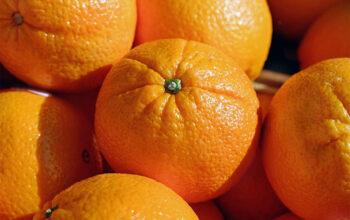 quoi faire avec des oranges index de recettes
