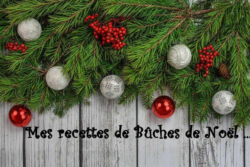 Mes recettes de Bûches de Noël … (index)
