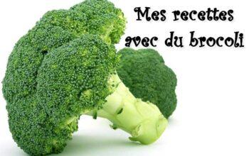 mes recettes avec du brocoli (index de recettes)