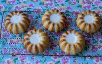 Mini Bundt Cakes Citron Pavot moule volcans Demarle Flexipan