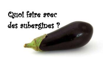 quoi faire avec des aubergines index de recettes