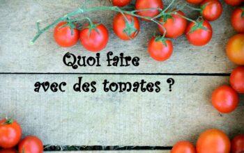 quoi faire avec des tomates index de recettes